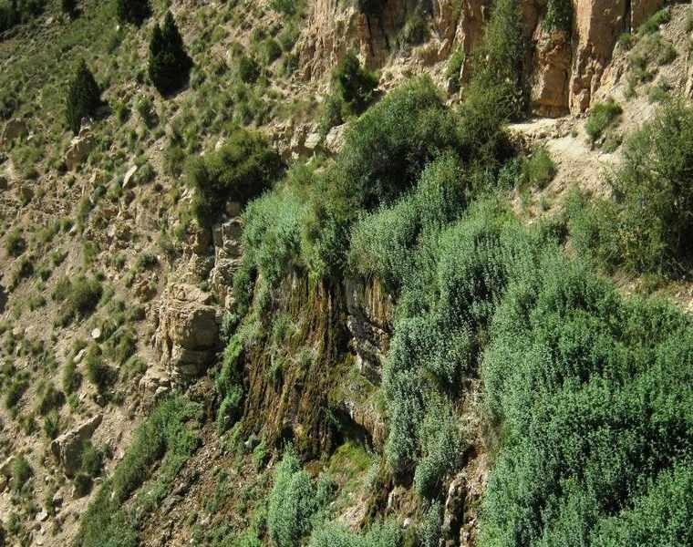 آبشار جم