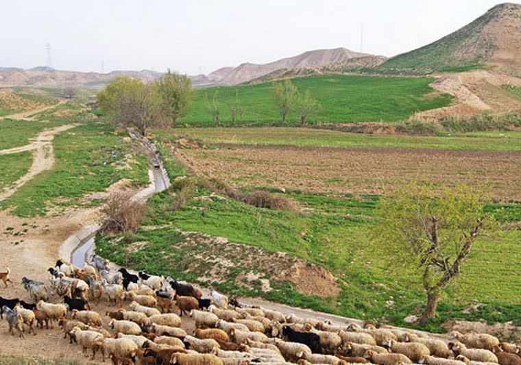 روستا کاستان
