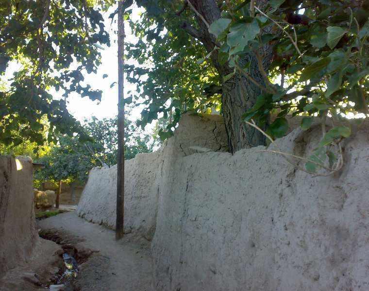 کوچه باغ های سمنان