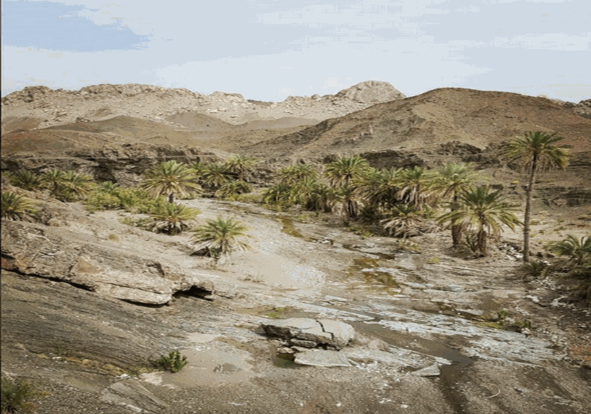 روستا و دره شهکهان