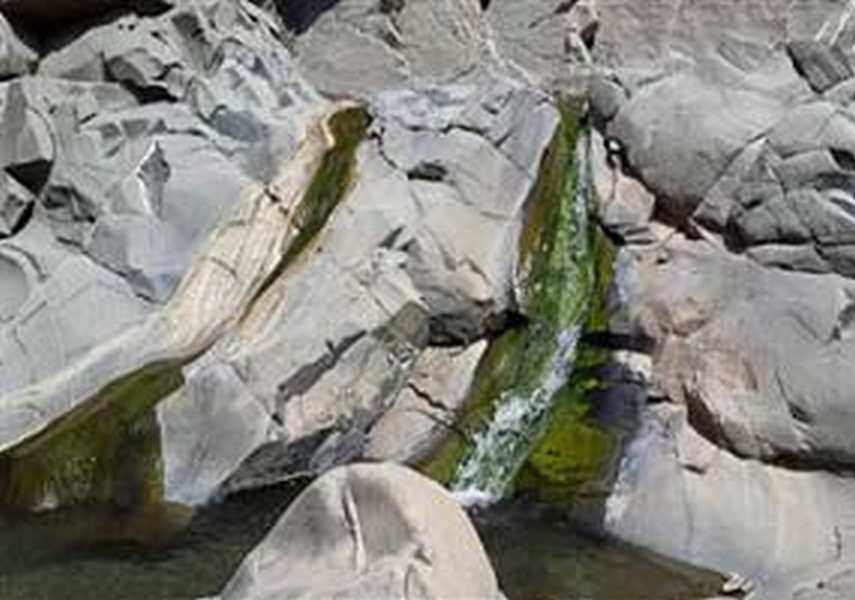 چشمه آبگرم مرتفع علی قلعه گنج