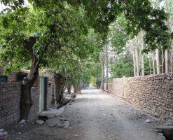 روستا کلدان