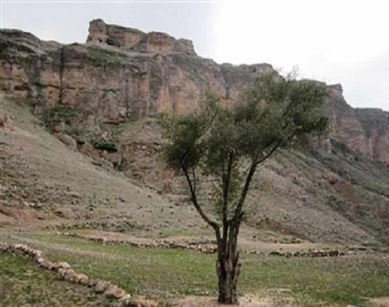 روستای انجرک
