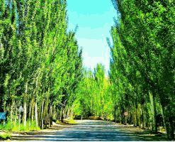 روستای خوان بهشتی گمشده در دل کویر