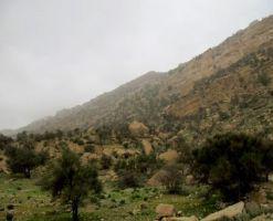 پناهگاه حیات وحش کوه سیاه