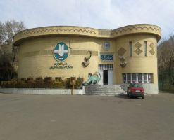 موزه تاریخ طبیعی زنجان، گشتی در حیات وحش استثنایی