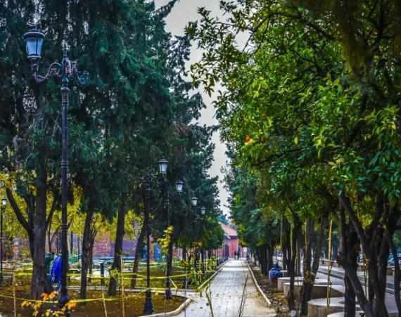 بوستان ولایت، بوستانی با امکانات متعدد