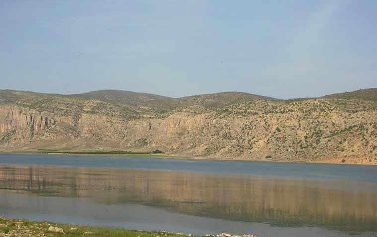 دریاچه ارژن