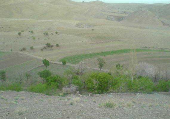 روستای پر مهر وباصفای  گل