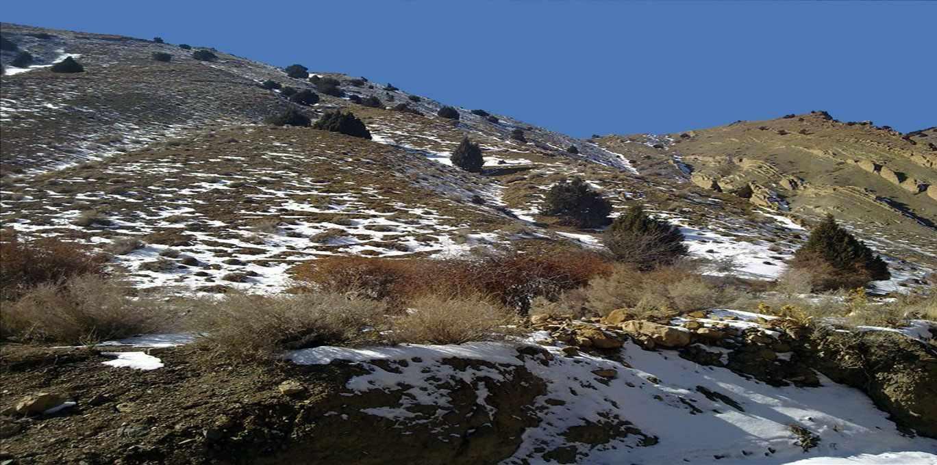 منطقه حفاظت شده مراکان